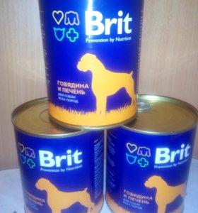 БРИТ консервы для собак говядина/печень, 850 г