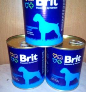 БРИТ консерцы для собак говядина/рис, 850 г