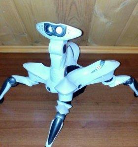 Робот-паук Roboquad
