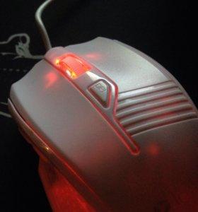 Мышка интро