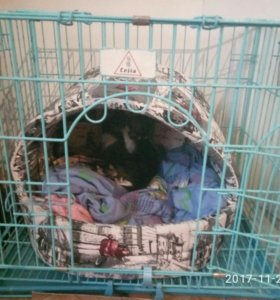 клетка для маленьких собак и кошек
