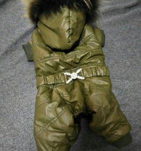 Зимний комбинезон для собачки
