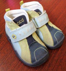 Ботинки Ecco на мальчика 20 р (13 см)