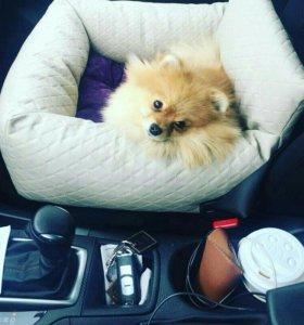 Автомобильное кресло для собак,ЗооАтелье,одежда дл