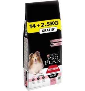 Pro Plan Корм для собак 14кг, 2,5 кг в подарок