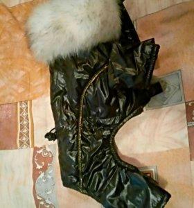 Зимний комбинезон для собаки