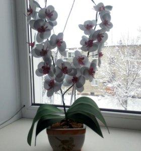 Орхидеи из фоамирана ручной работы