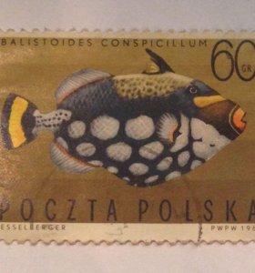 Марки почтовые Польша