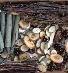 Деревянные спилы, ветки, шишки