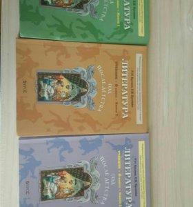 Учебник и по литературе 6 класс.3 части