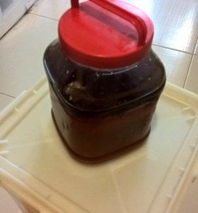 Цветочный кубанский мёд 2014 г в таре 4 кг