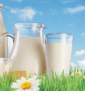 Домашнее коровье молоко