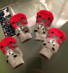 Носки для кошек и собак