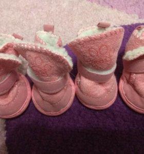 Ботиночки для собак маленьких пород. Новые