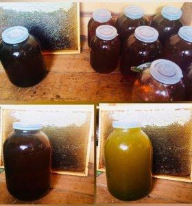 Натуральный мёд с Никольского района
