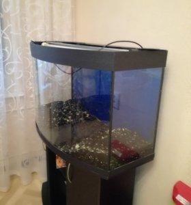 Продается аквариум 200 литров, в хорошем состоянии