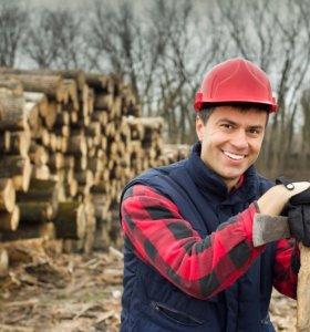 требуются вальщики леса