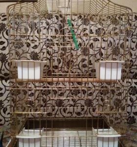Клетка для большой птицы