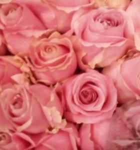 Розовые розы пинк купить в спб