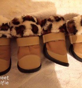 Ботиночки для собак средних пород.