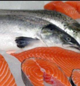 Рыба Сёмга Свежемороженная