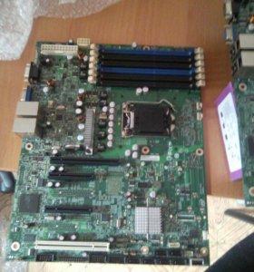Материнка 1156 сокет (только Xeon)
