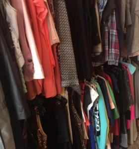 Одежда на любой вкус