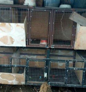 Клетки для кроликов и.т.д.