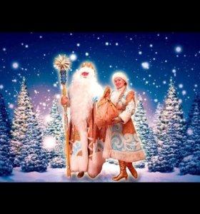Поздравление Деда Мороза и Снегурочки