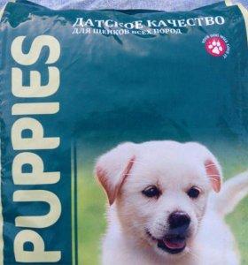 корм для щенков All Puppies.