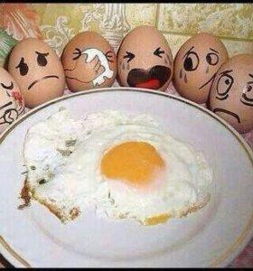 Яйцо куриное домашнее.