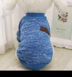 Голубой тёплый свитер для маленькой собачки