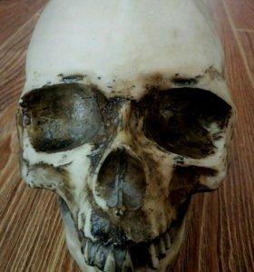 Копилка в виде черепа
