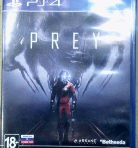 PREY SP4