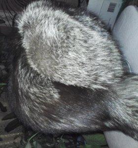Шапка-ушанка чернобурка