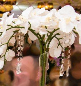 Композиция из орхидей в вазе