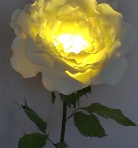Роза-торшер