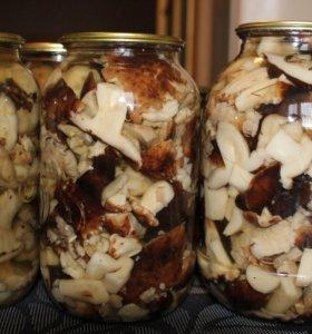 грибы маринованые