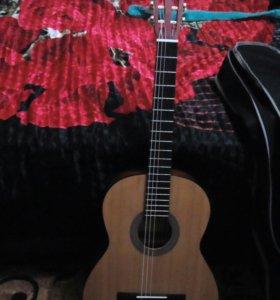 Гитара. PARKWOOD.