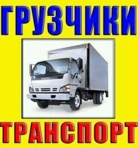Фургоны 2;3;5тонн. Бортовые грузовики.