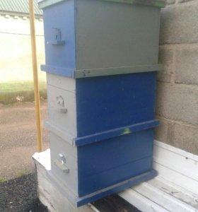 Улики для пчелок