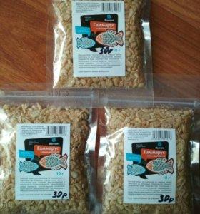 Гаммарус сублимированный корм для рыб и черепах