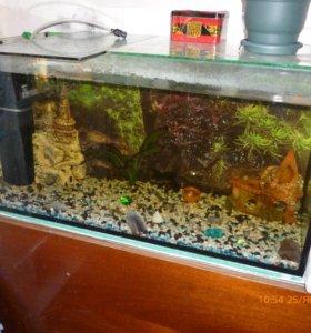 Продам аквариум в полном комплекте.