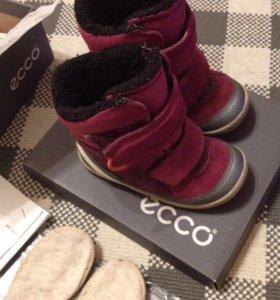 Ботинки Осень/Зима и стельки Ecco