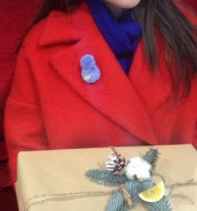 Новогодняя Брошь-шапуля