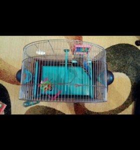 Клетка для птиц+игрушки)