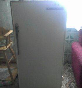 Холодильник-ока