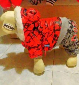 Зимняя одежда комбинезоны для собак