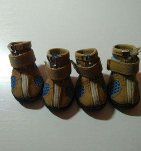Ботиночки для собак мелких пород. Petmax