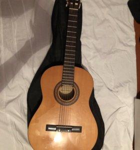 Гитара Martinez 503